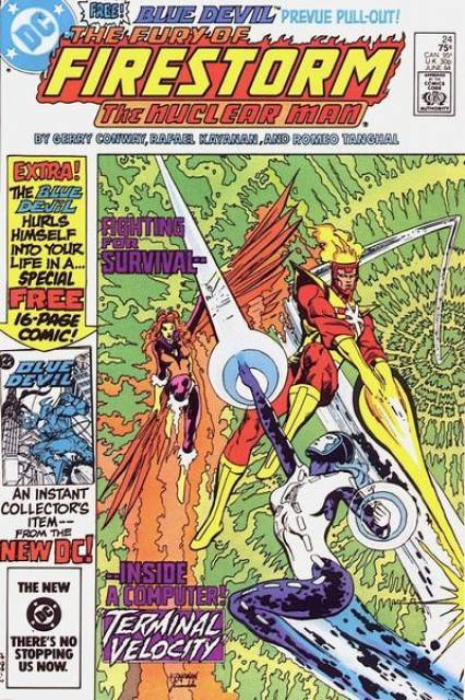 fury of firestorm vol 2 issue 24